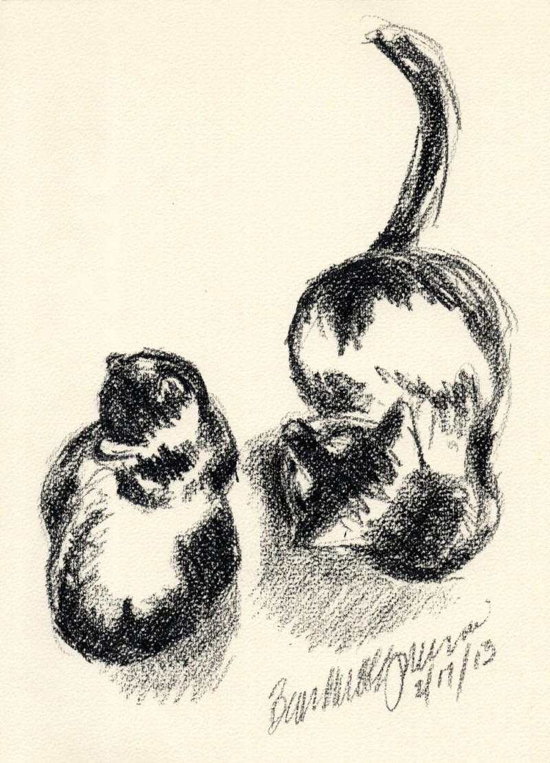charcoal sketch of two cats on cream colored paper