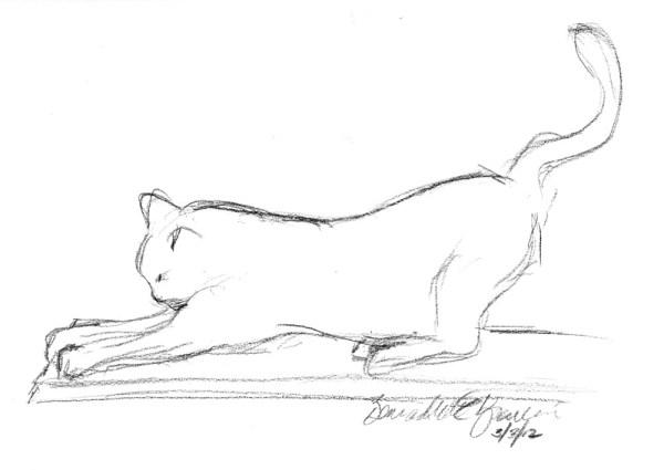 pencil sketch of cat scratching
