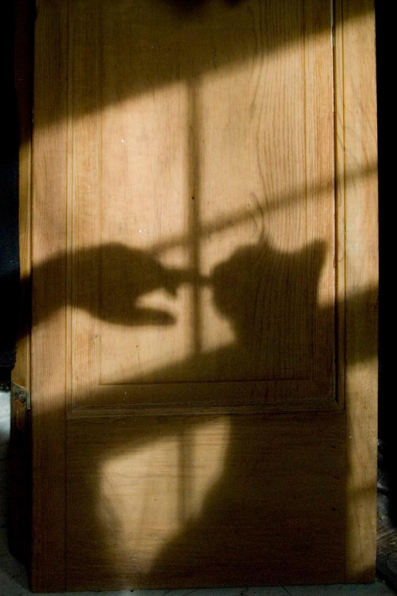 shadow of cat on door