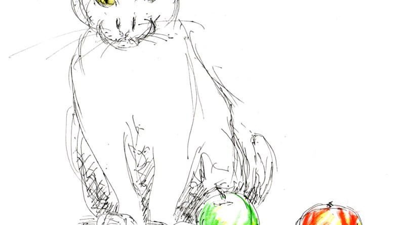sketch of cat with fruit