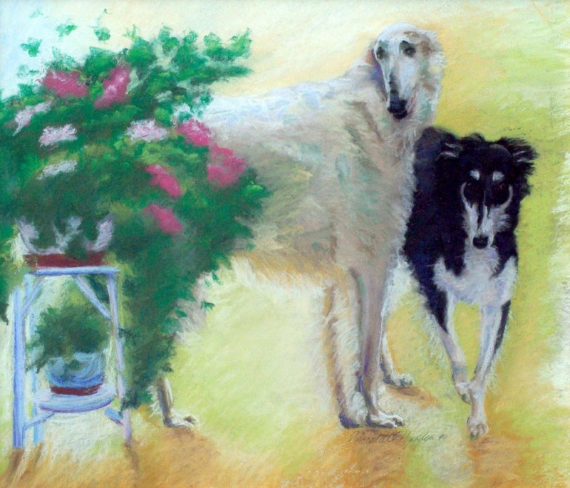 pastel portrait of two borzois
