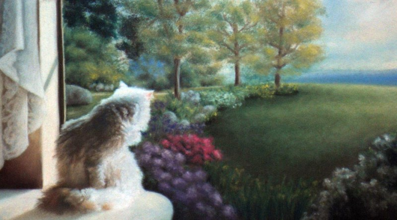 pastel portrait of cat looking out window