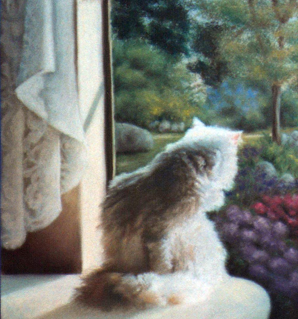 """Spring"" detail of cat and curtain."