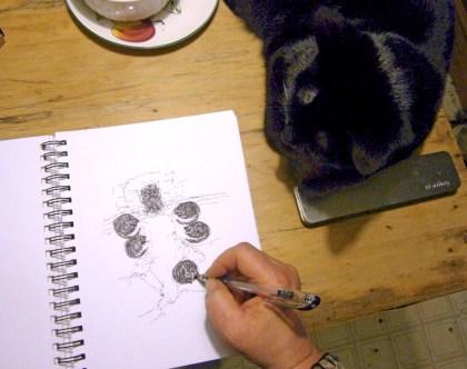 black cat watching sketch