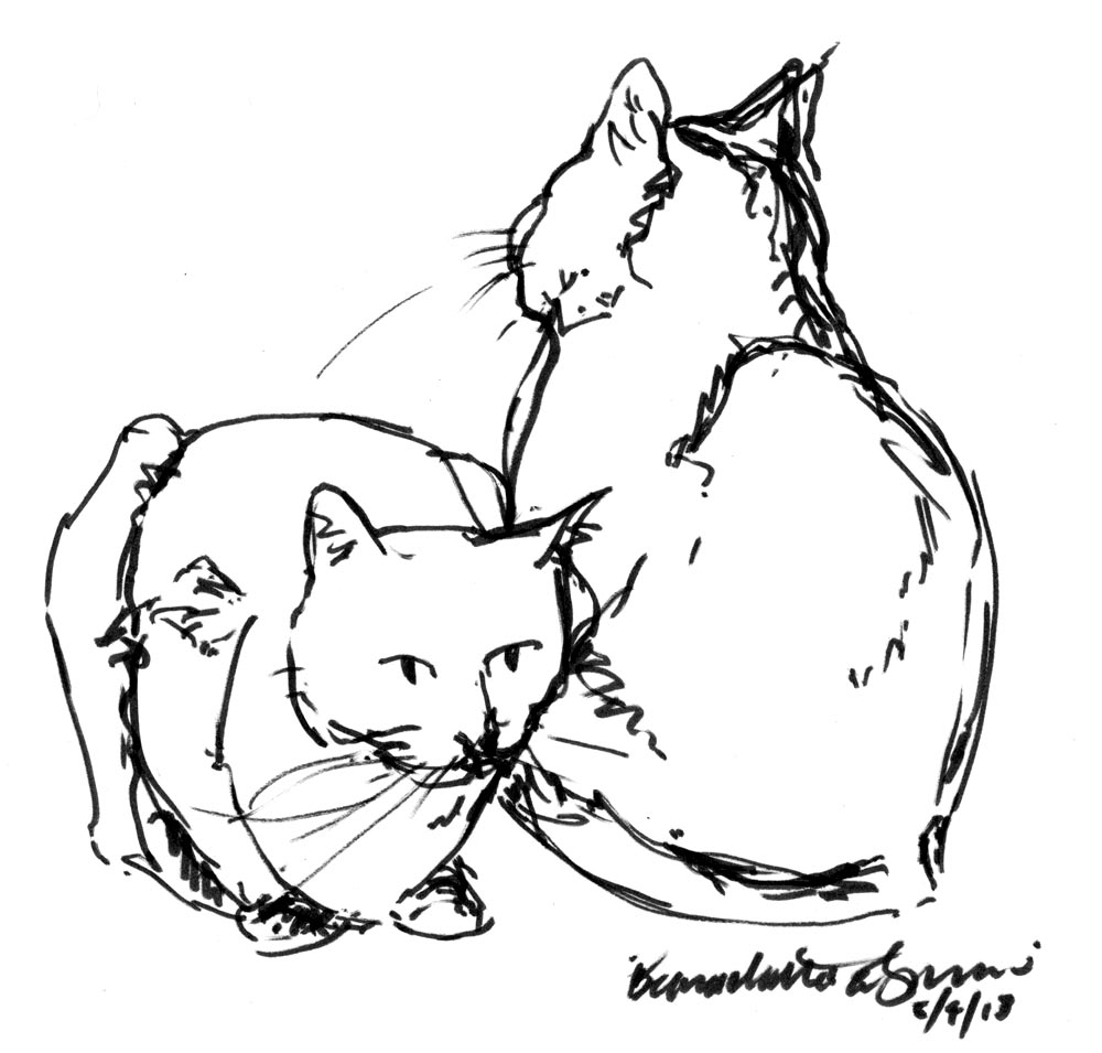 Daily Sketch: I've Got Your Back ~ The Creative Cat