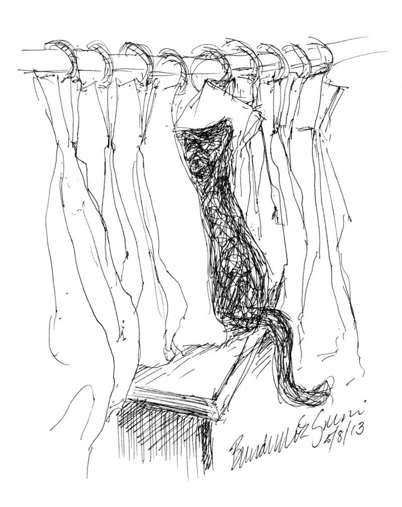 """""""Between the Curtains"""", ink technical drawing pen, 5.5"""" x 8.5"""" • Bernadette E. Kazmarski"""