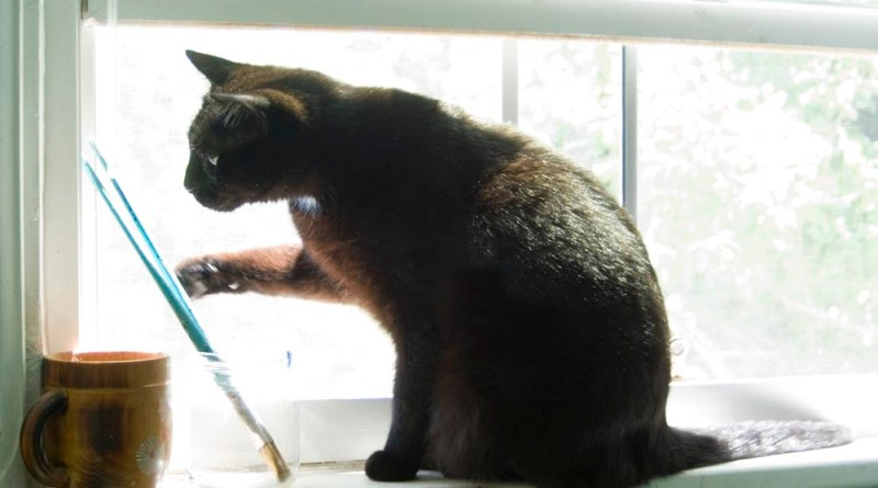 black cat on windowsill with paintbrushes
