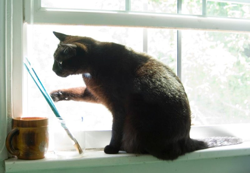 Jelly Bean has a sudden inspiration and reaches for the brushes.