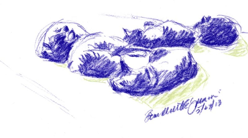 pastel sketch of cats sleeping
