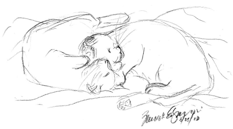 charcoal sketch of two cats sleeping