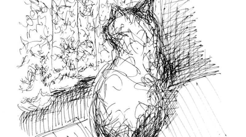ink sketch of cat looking out door