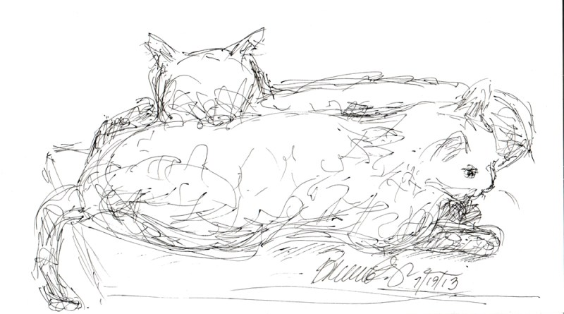 ink sketch of two cats