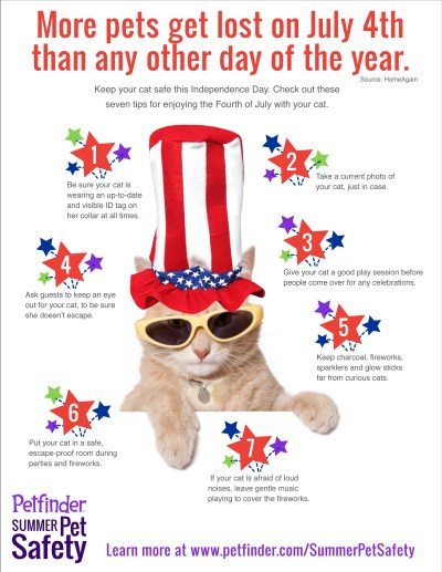 Petfinder 4th of july info