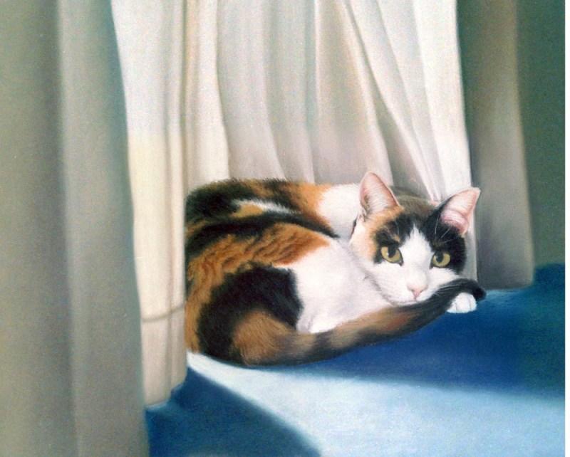pastel portrait of calico cat