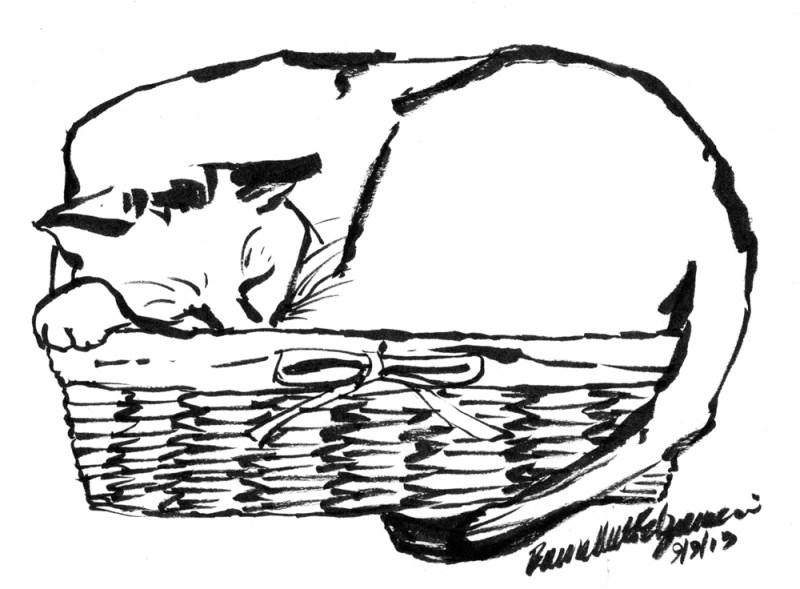 brush pen draking of cat in basket