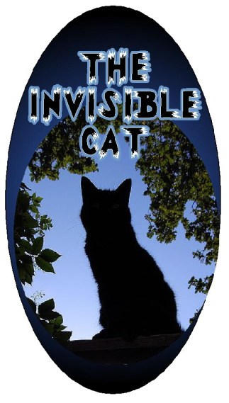 invisible cat graphic