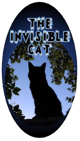 invisible cat graphic