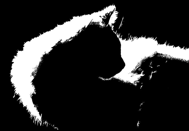 ink drawing of cat silhouette