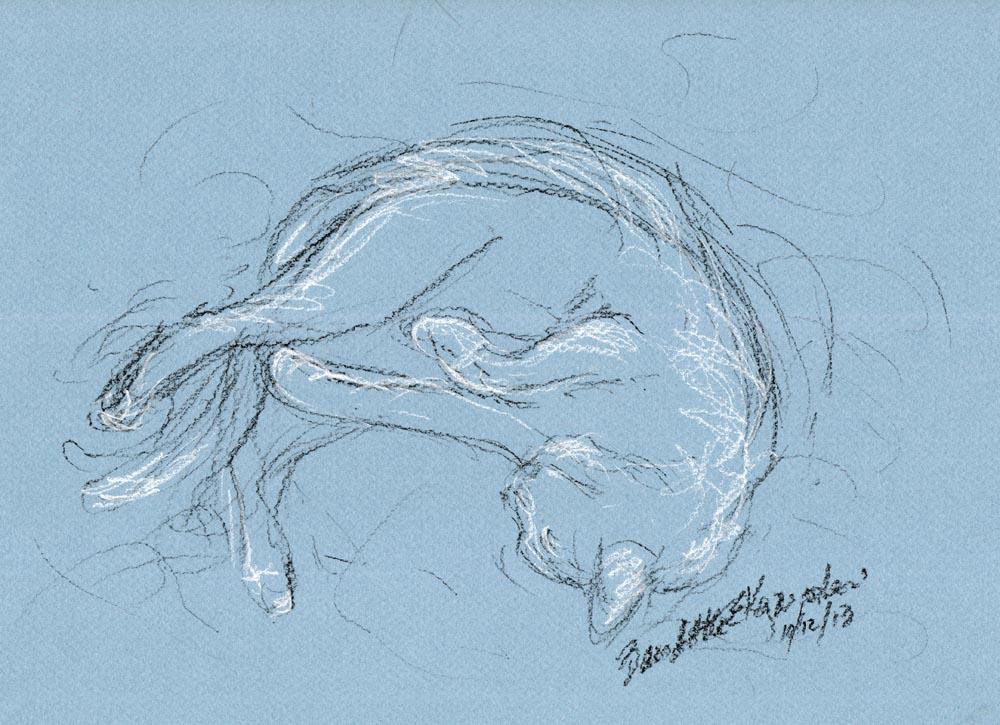 """Rolling Around"", black pastel pencil and white charcoal pencil on blue Canson paper, 10.5"" x 7.5"" © Bernadette E. Kazmarski"