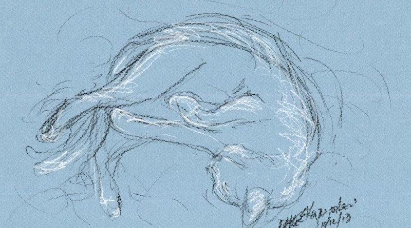Daily Sketch Reprise: Rolling Around, 2013