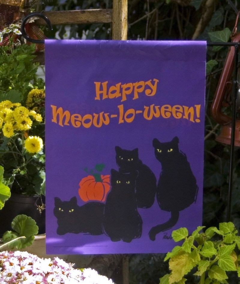 """Happy Meow-lo-ween"" design."