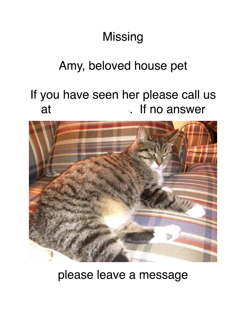 Amy's missing flyer.