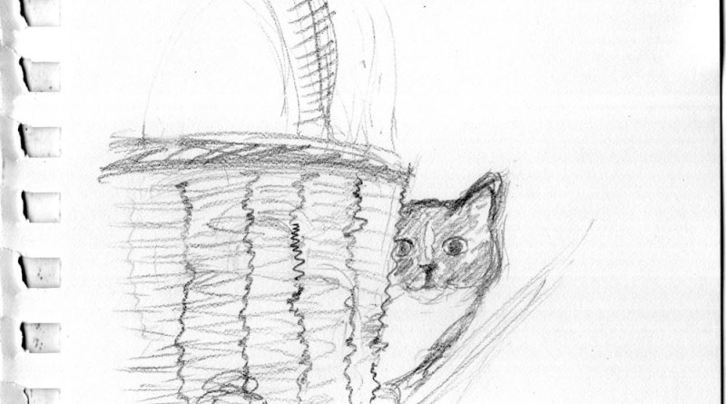 pencil sketch of cat and basket