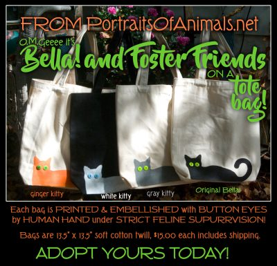 Bella and Foster Friends Tote Bags!