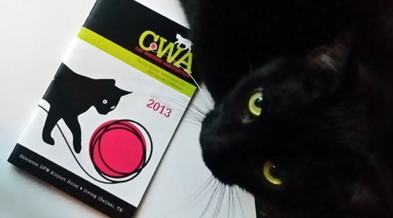 black cat and cwa program