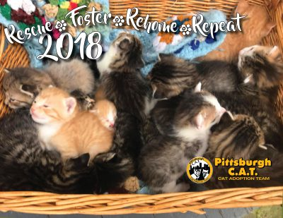 Pittsburgh CAT Calendar cover.