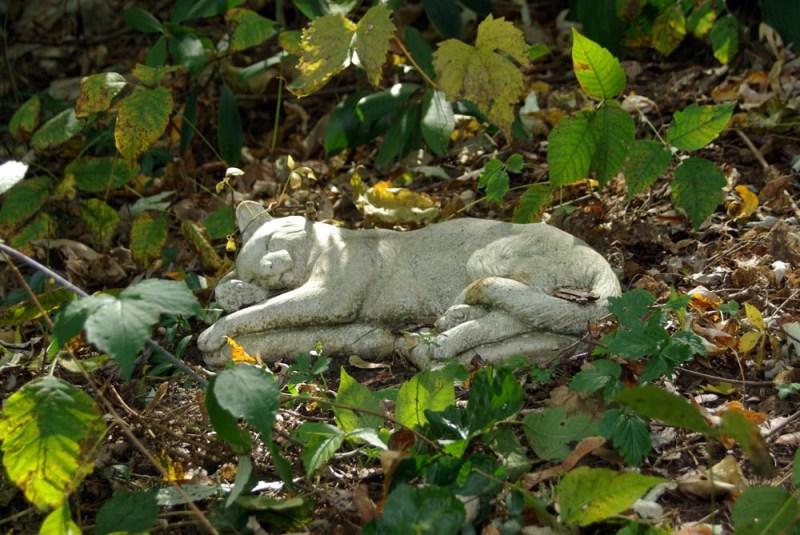 stone kitty marker