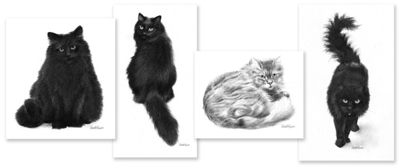 Composite of all four sketches.