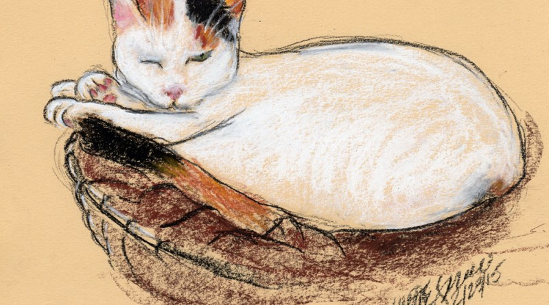 """Countess Napping"", conté and pastel on tinted paper, 10"" x 8"" © Bernadette E. Kazmarski"
