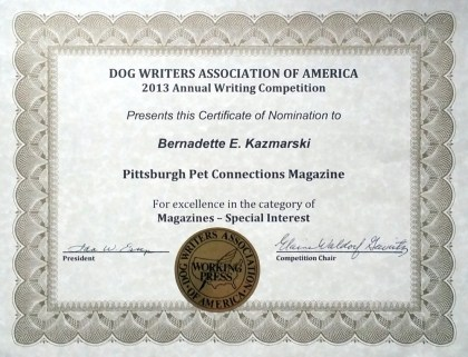 DWAA Certificate of Excellence for Regional Magazine