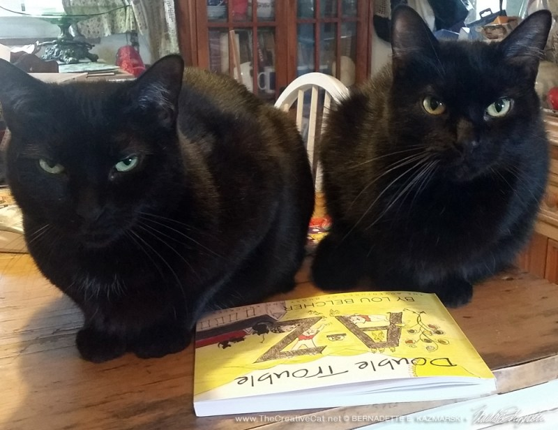 My boys want to know when they will get their book.
