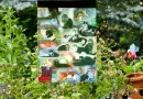 22 Cats Garden Flag
