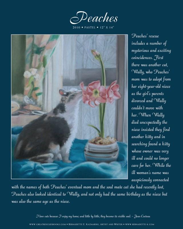 portrait of cat in day book
