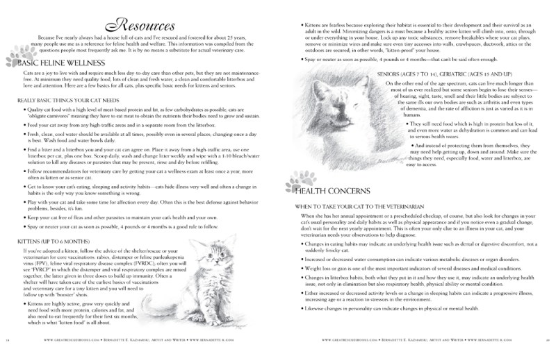 "Resources pages in ""Great Rescues Day Book"""