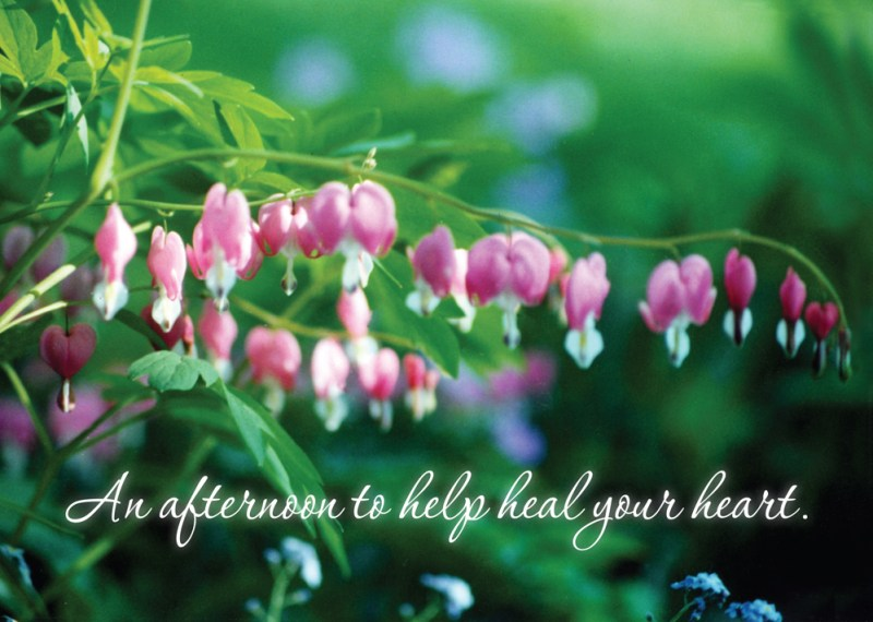 Bleeding Hearts and Forget-Me-Nots