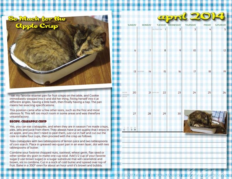 cookbook calendar with tortoiseshell cat