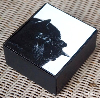 Black and Light Vintage Cigar Box Keepsake