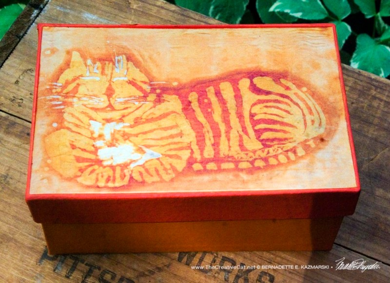 Orange Cheshire Kitty Keepsake Box