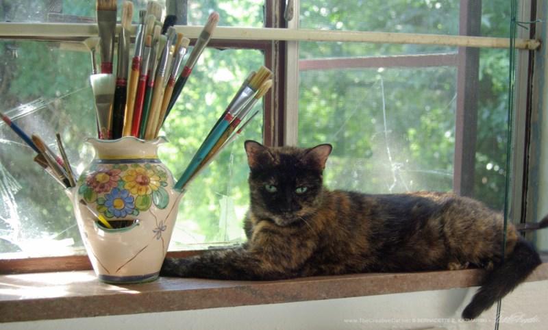 Kelly the Studio Cat, on the windowsill.