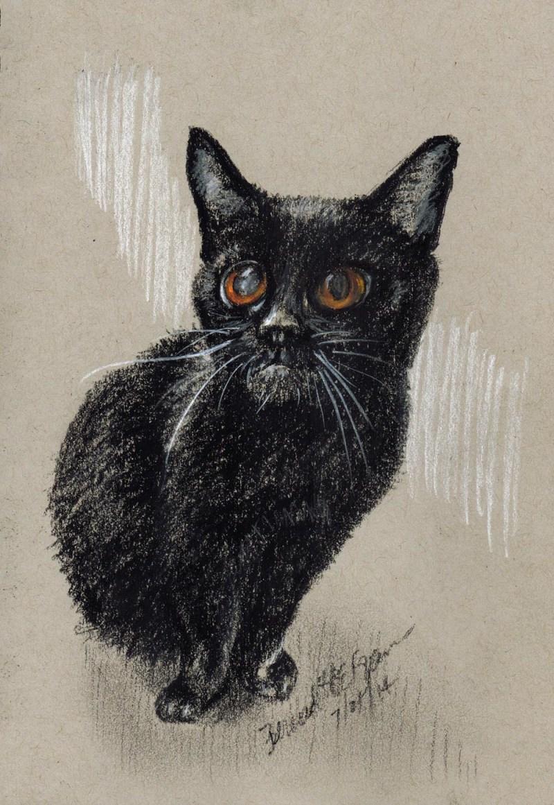 sketch of black cat
