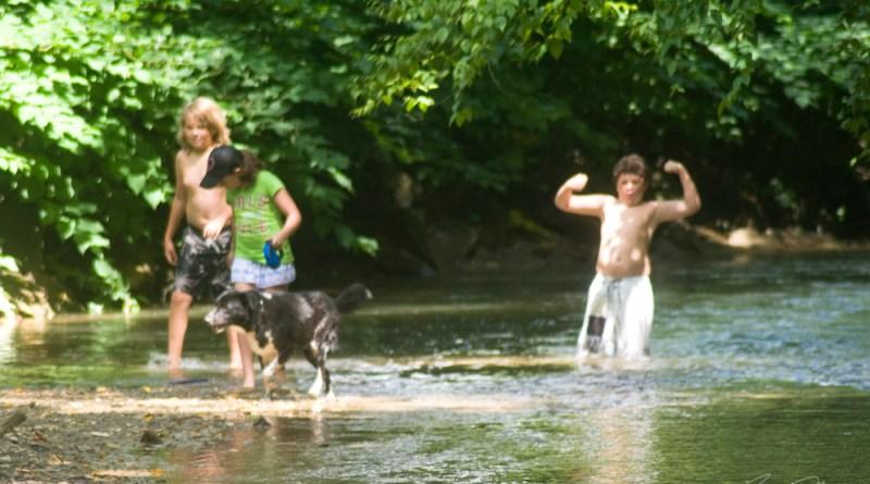 My great niece and nephews with Bingo splashing through Robinson Run.