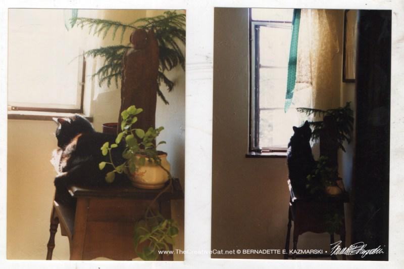 Two photos of Kublai