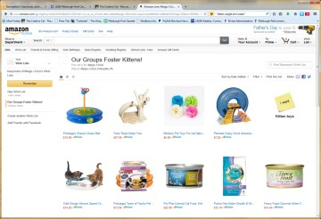 amazon wish list for kittens