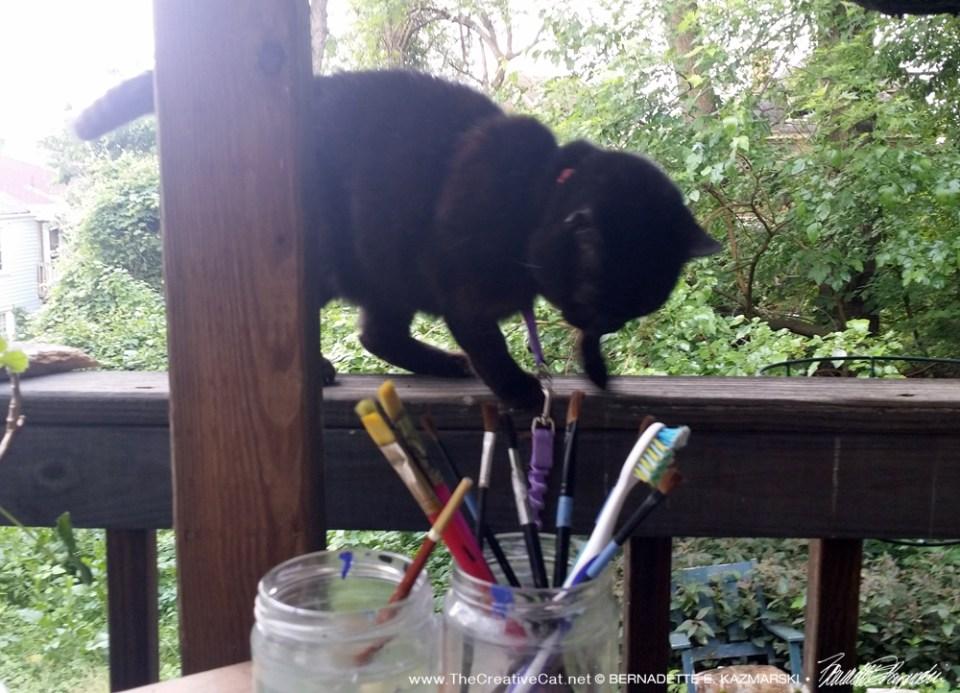 Mimi kept a close watch on my work.