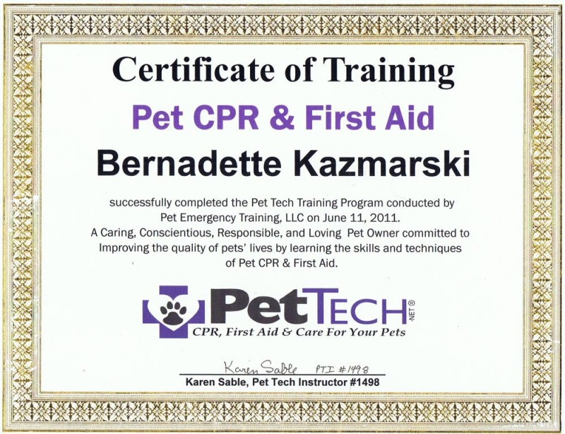 My certificate.