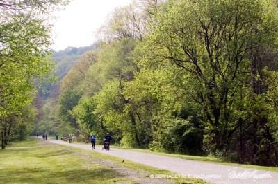 trail on Saturday